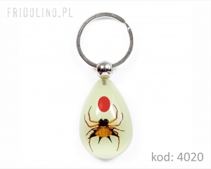 Keychain, Spider spike, Red Bean